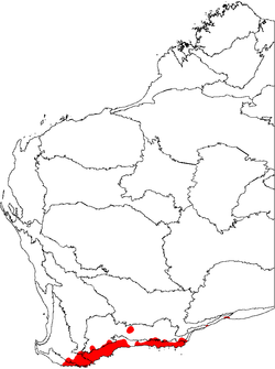 Adenanthos cuneatus map.png