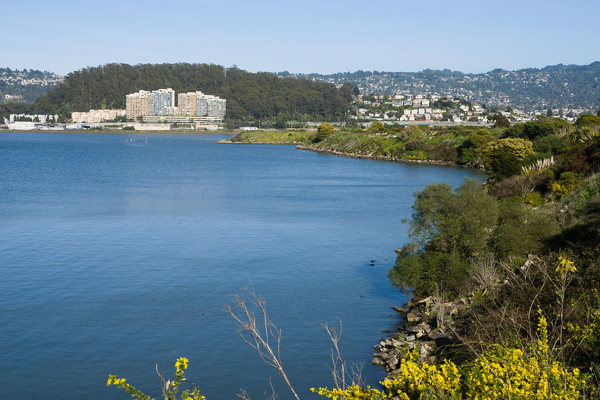 View of Albany from Albany Bulb, with Albany Hill on the left