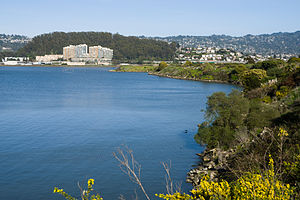 Albany, California - View of Albany from Albany Bulb, with Albany Hill on the left