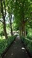 Algemene Begraafplaats Lekkerkerk. Laantje.jpg