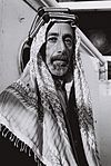 Ali of Hejaz.jpg