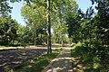 Allée bois de Boulogne 15.jpg