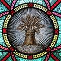 All Saints Catholic Church (St. Peters, Missouri) - stained glass, sacristy, sheaves of wheat detail.jpg