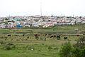Allanridge Township, Uitenhage, South Africa.jpg