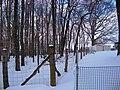 Alleghany, Blacksburg, VA 24060, USA - panoramio - Idawriter (5).jpg