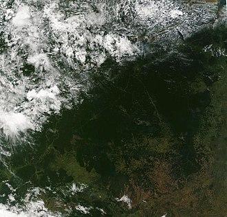 Tocantins - Amazon Rainforest