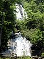 Anna Ruby Falls - Curtis Creek.jpg