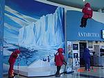 Antarctic Centre - 2076322120.jpg