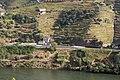 Apeadeiro de Caldas de Moledo visto a partir da EN222, 2010.10.02.jpg