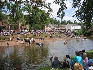 Appleby Horse Fair - Washing the horses at Appleby Horse Fair