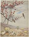 April (Boston Public Library).jpg