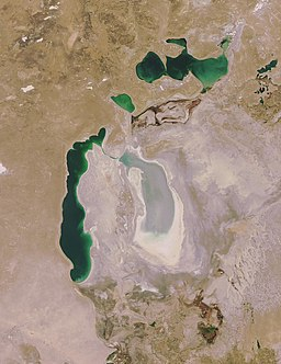 Aral Sea 05 October 2008.jpg
