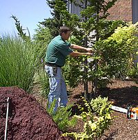Western Chapter Isa River Island