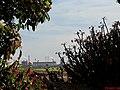 Arbusto popularmente conhecido como Coroa-de-cristo (Euphorbia milii) na entrada do Engenho Santo Mário em Catanduva. Ao fundo a fábrica de suco de laranja da Citrovita. - panoramio (1).jpg