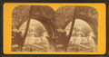 Arch at Fairmount (Park), from Robert N. Dennis collection of stereoscopic views.png