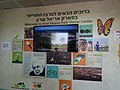 Ariel Sharon Park (8).jpg