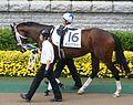 Asakusa Kings 20070527P1.jpg