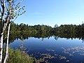 Astebotjarnen Vastergotland Sweden from SW Aug1 2020.jpg
