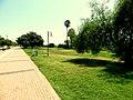 Atatürk Parkı... - panoramio.jpg