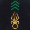 Attribut fourreaux-légion étrangère infanterie & génie.png