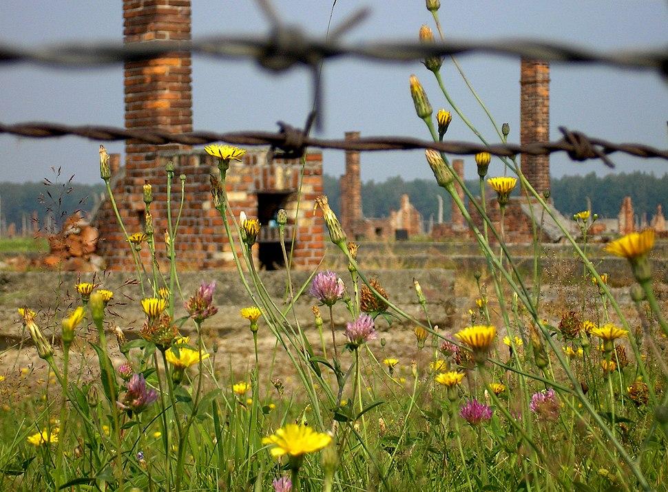 Auschwitz-Birkenau abgebrannte Barracken