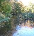 Autumn - panoramio (14).jpg