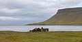 Búlandshöfði, Vesturland, Islandia, 2014-08-14, DD 088.JPG