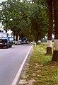 B1 Verkehr 01.jpg
