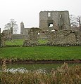 Baconsthorpe Castle - view across the moat - geograph.org.uk - 1121165.jpg
