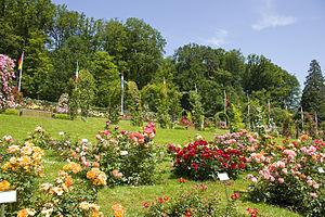 Rosengarten am Beutig