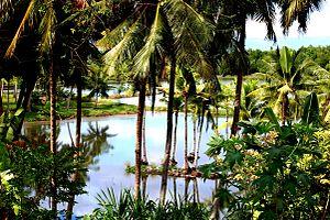 Badian, Cebu - Image: Badian Fish Pond
