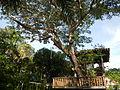 BaletePark,Lipa,Batangasjf0512 18.JPG