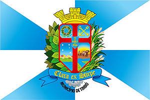 Timbó - Image: Bandeira timbo sc