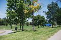 Barry Glen Park, Barrhaven.jpg