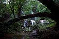 Batlag Falls Tanay.jpg