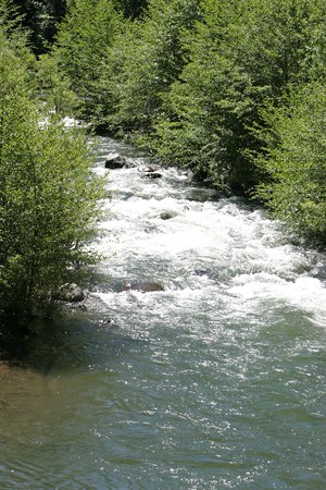 Battle Creek (California) - Image: Battle Creek Californiab