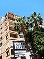 Beirut Beyrouth 587 (1).jpg
