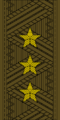 Belarus Armed Forces—01 Colonel General rank insignia (Khaki)—MIA.png