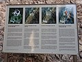 Belfort Castle information board 6.JPG