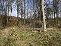 Bell Beck Wood - geograph.org.uk - 732205.jpg