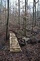Big Hill Pond State Park Trail 9.jpg