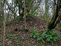 Bing at Fergushill 26 pit.JPG
