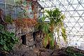 Biosphere 2015 01 18 0319.jpg