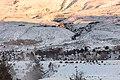 Bison near the north entrance of Yellowstone in winter. (fa9dd35a-853b-43d9-b1e8-3a1bbc68bfa0).jpg