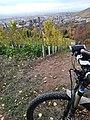 Blick vom Jakobsweg auf Esslingen am Neckar 02.jpg