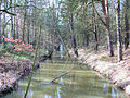 Blievenstorf Brenzer Kanal 2009-02-24 001.jpg