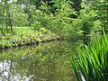 Bois de Vincennes printemps 2009 - 002.JPG