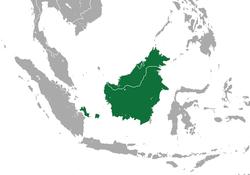 Distribución del lori de Borneo antes de su división en 4 especies en el 2013.