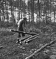Bosbewerking, arbeiders, boomstammen, werkzaamheden, Bestanddeelnr 253-5916.jpg