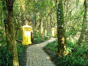 Bosque de Portugal, Curitiba